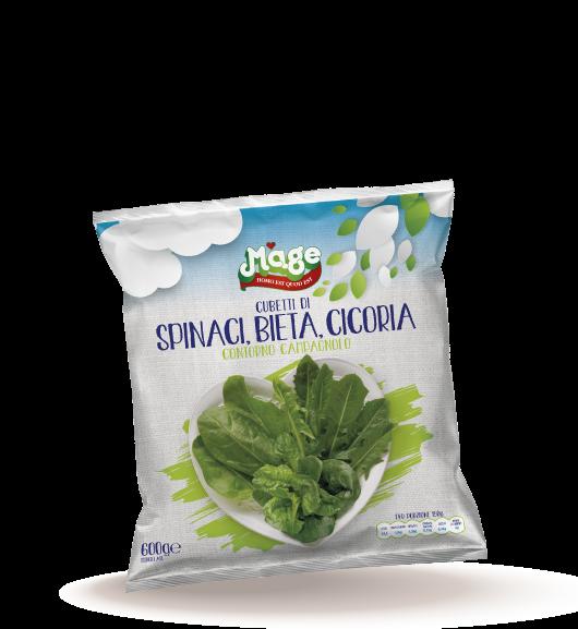 spinaci bieta cicoria